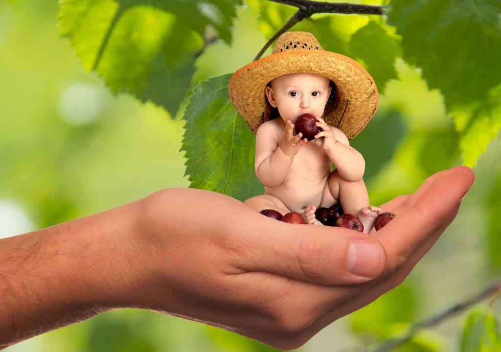 Alimentacao Vegetariana 1 1024x720 - Alimentação Vegetariana para Bebês e Crianças