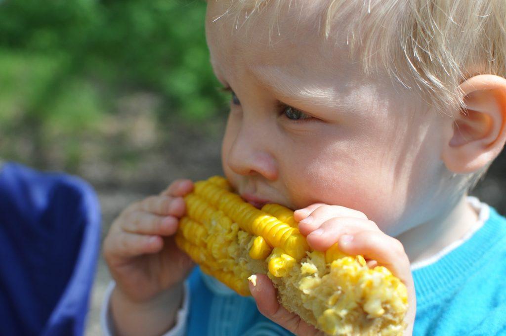 Alimentacao Vegetariana 1024x680 - Alimentação Vegetariana para Bebês e Crianças